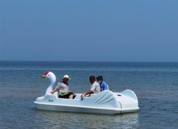 白天鹅电动船